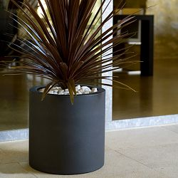 Contemporary Cylindrical Indoor-Outdoor Planter