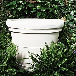 Serralunga Neoclassic Indoor-Outdoor Rolled Rim Planter