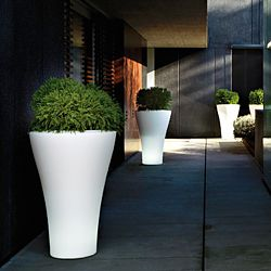 Serralunga Ming Indoor-Outdoor Planter by Designer Rodolfo Dordoni