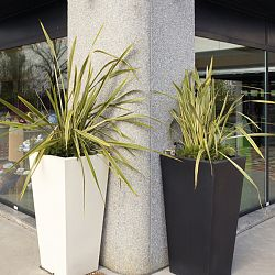 Serralunga Kabin Tall Indoor-Outdoor Planter by Designer Luisa Bocchietto