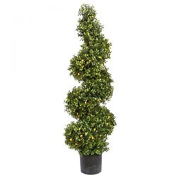 Boxwood Spiral with LED Lights